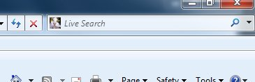 You can change the search provider favicon in Internet Explorer.